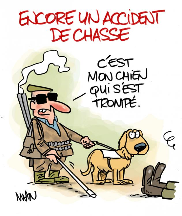 presse : Chasse-accident