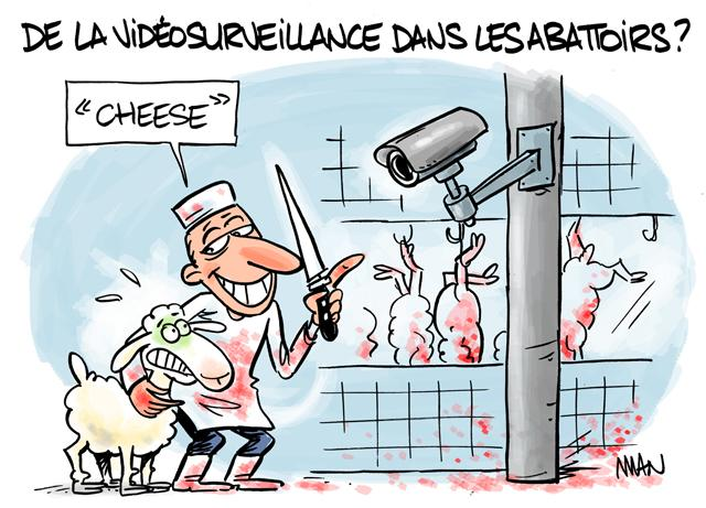 presse : Cheese