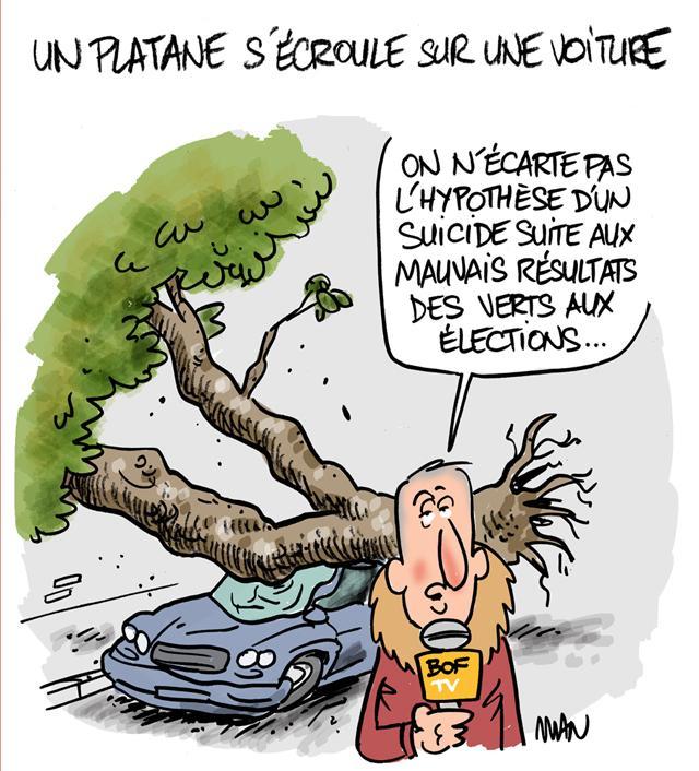 """Résultat de recherche d'images pour """"platanes humour"""""""